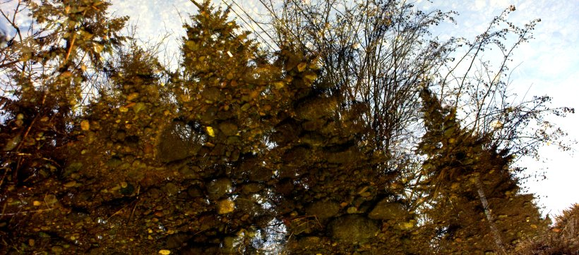 reflection-panorama