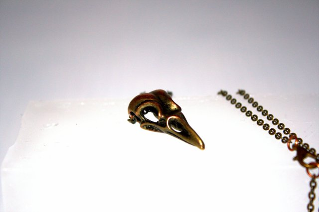 metal-crow-skull