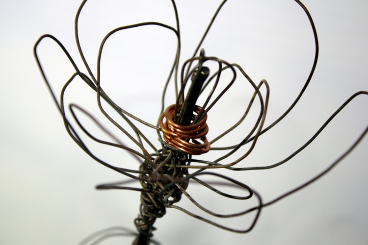 wire-rose-close-up