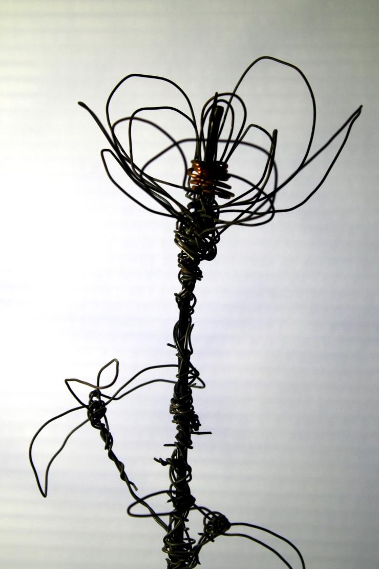 wire rose profile.JPG