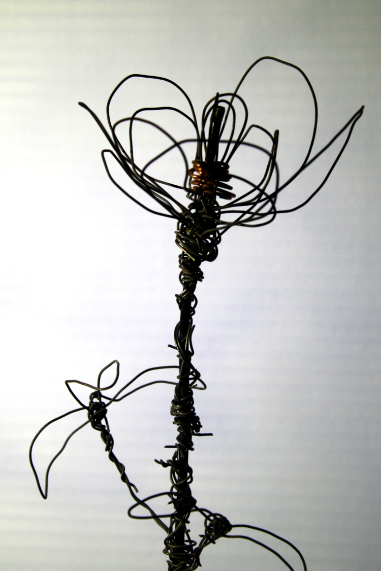 wire rose profile.JPG