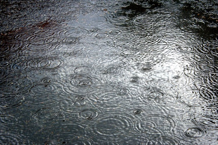 puddlefade.jpg