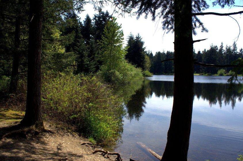 spot by bradley lake.jpg