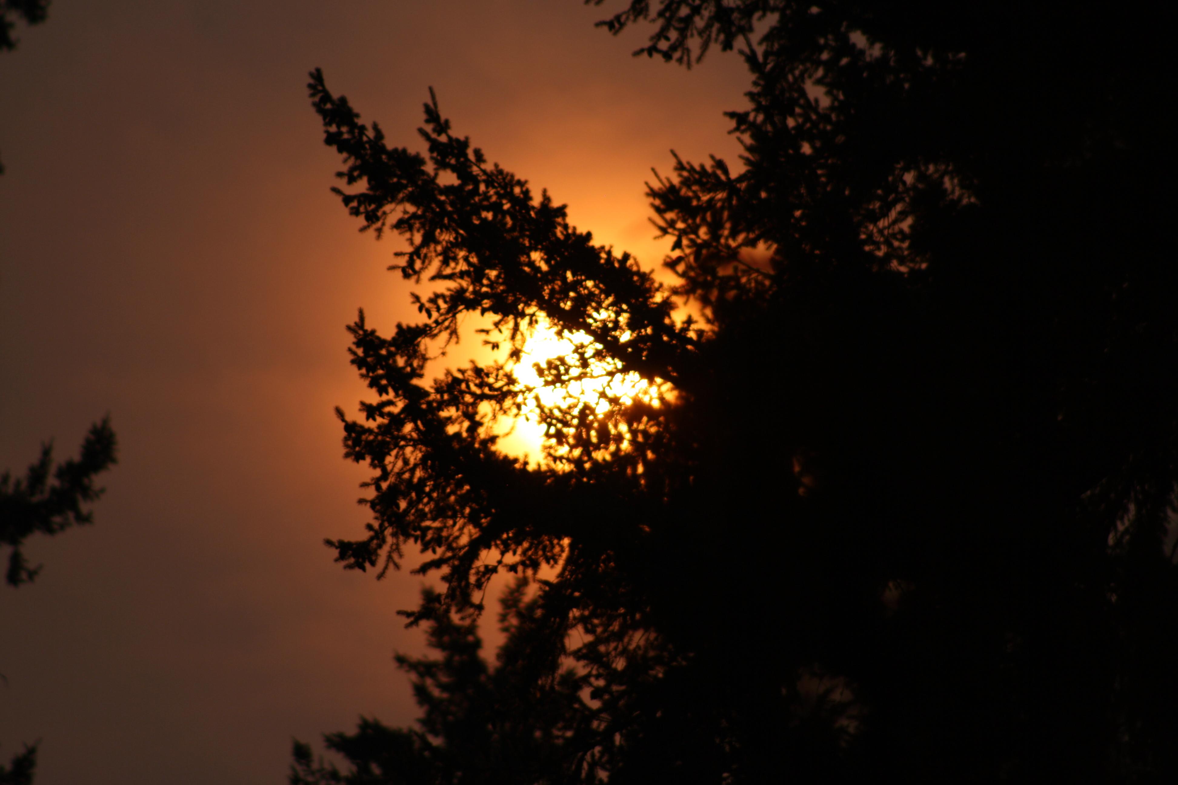 red sun.JPG