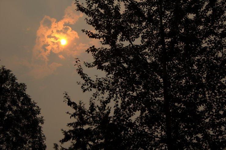 ashen sky.jpg