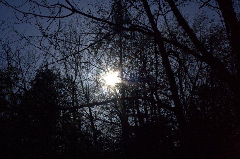 sun as moon.jpg