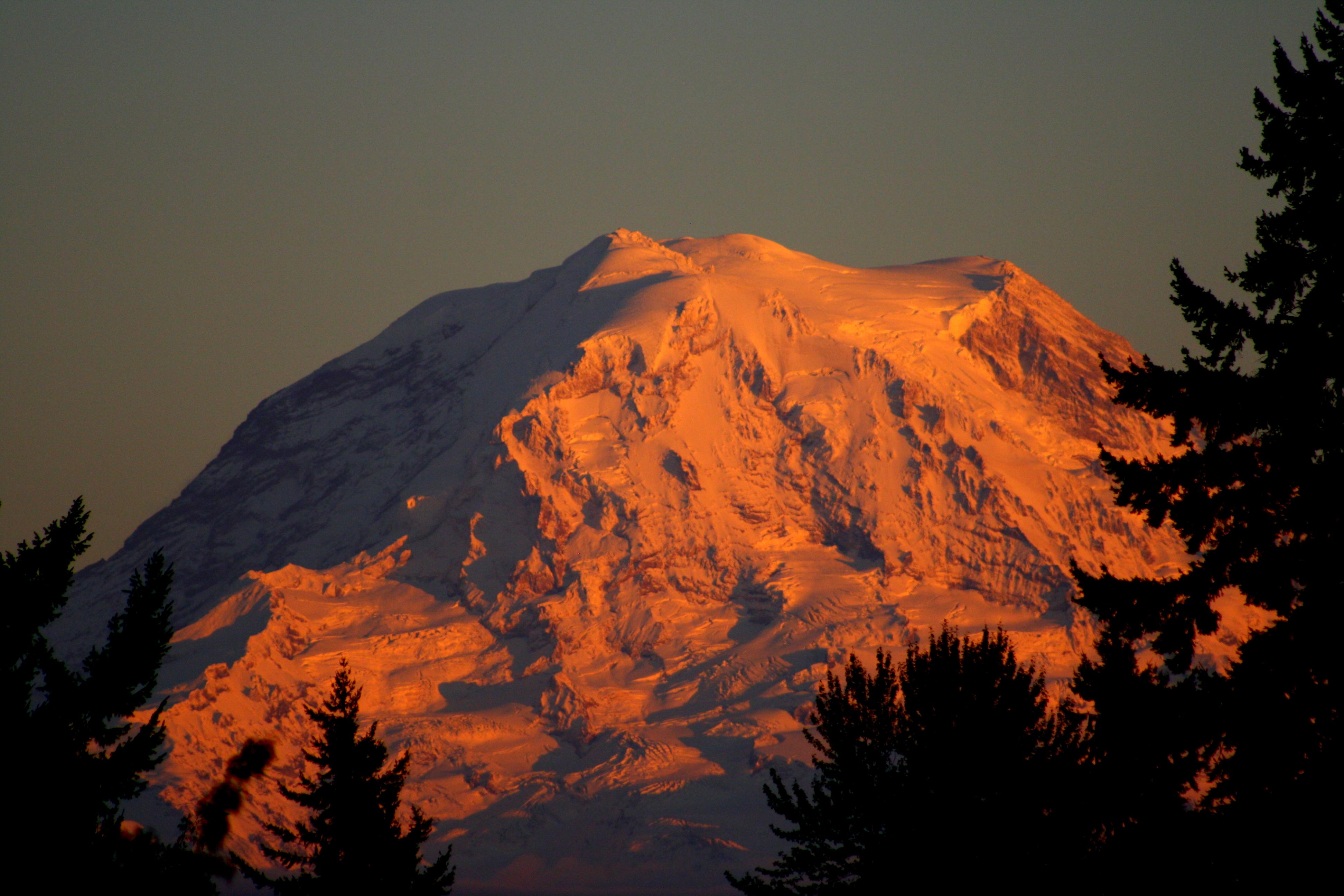 rainier from pipeline.JPG