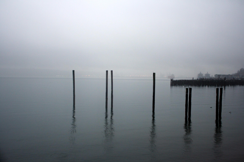 quiet wharf.JPG