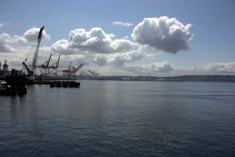port of seattle.jpg